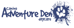 Logo for the Adventure Den doggy daycare