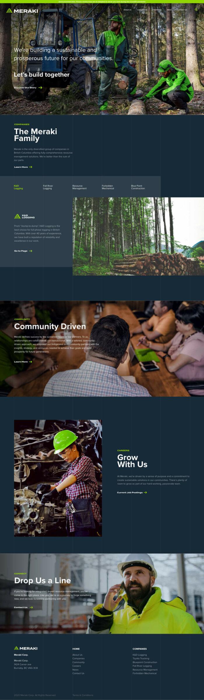 Homepage design from Meraki Resource website project